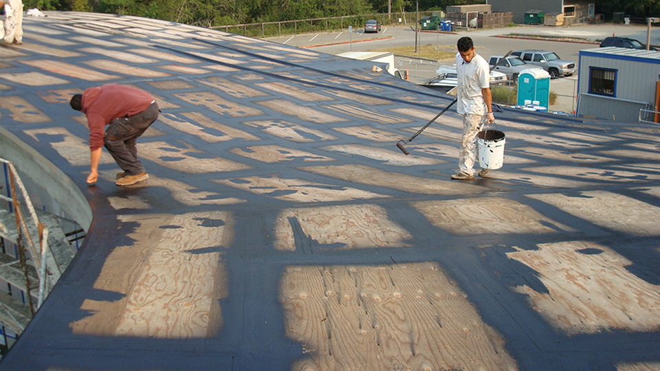 Self Leveling Roof Coating : Wetsuit products neptune coatings