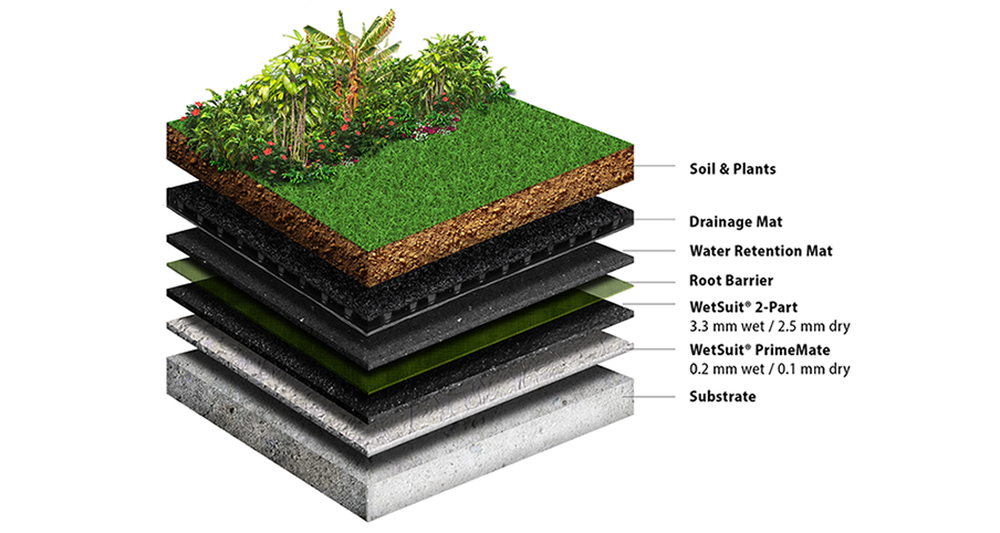 Green Roofs Neptune Coatings